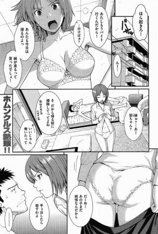 【オリジナル 同人誌・エロ漫画】彼女の妹とヤッちゃったのはトラブル なんだからね!www(ホムンクルス)