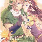 【ゼルダの伝説 トワイライトプリンセス】二週間以上ぶりにゼルダ姫に 会ったリンクが感情を抑えきれなくてキスしてイチャイチャエッチ?【エ ロ同人誌】