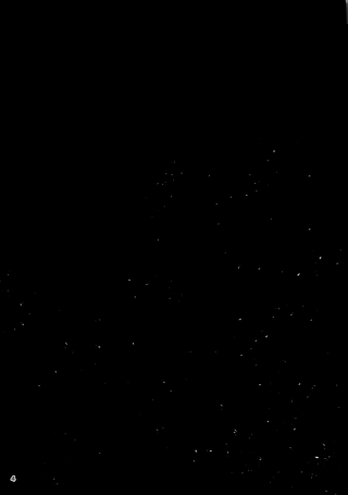 【エロ同人誌】爆乳女ハンターがゴブリン達に捕まって異種姦レイプ陵辱されて しまう!!【barista エロ漫画】