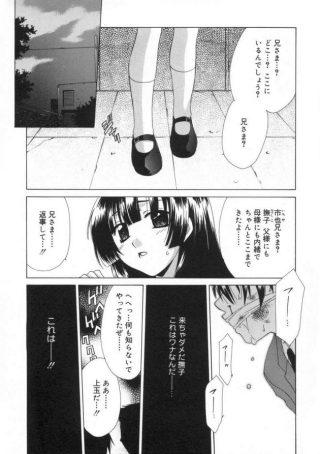 【エロ漫画】市也兄に親には内緒で来たとJKの撫子は言うと、虐められて いた市也の罠で撫子は拘束される。【無料 エロ同人】